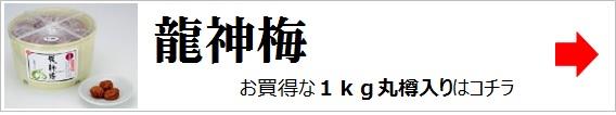 7178龍神梅